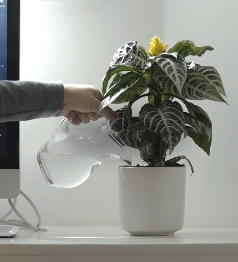 Опазване на околната среда