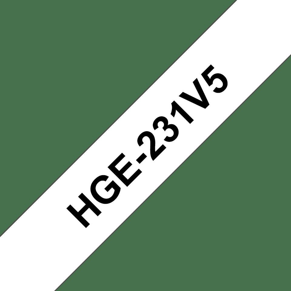 HGE231V5 0