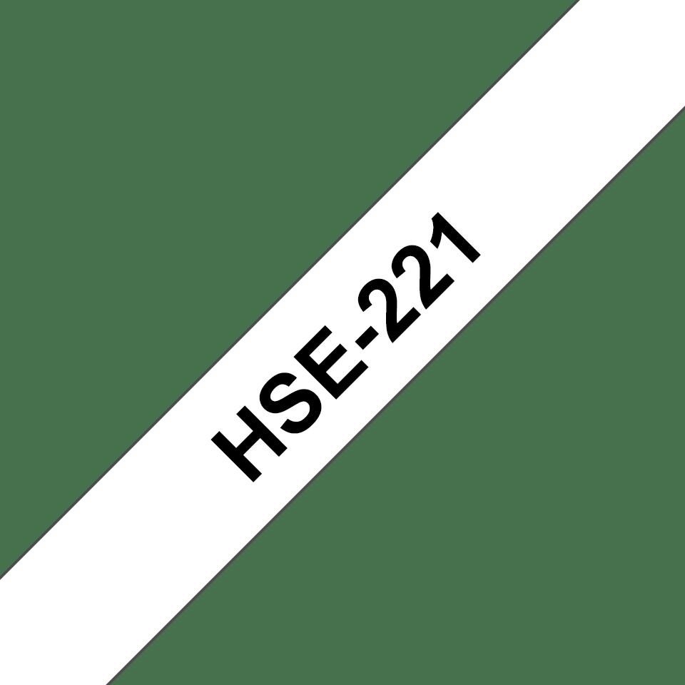 HSE221 3