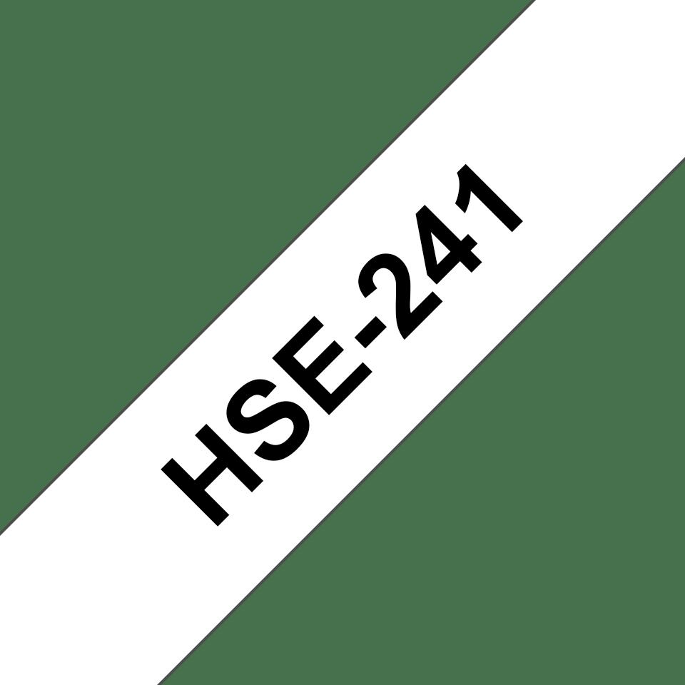 HSE241 2