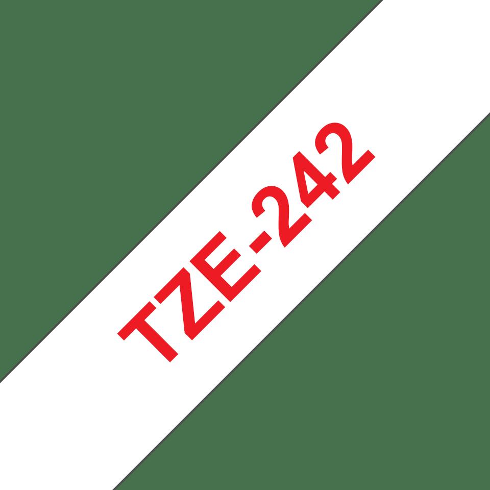TZe242 2