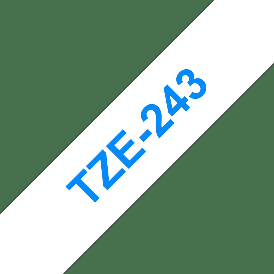 TZe243 2